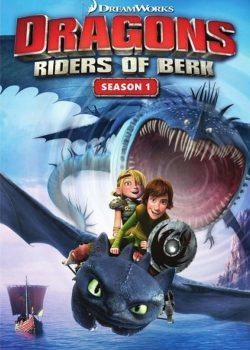 Bí Kíp Luyện Rồng (Phần 1) – DreamWorks Dragons (Season 1)