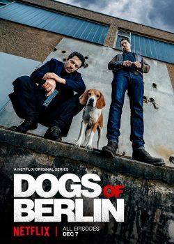 Chó Ở Berlin (Phần 1) – Dogs Of Berlin (Season 1)