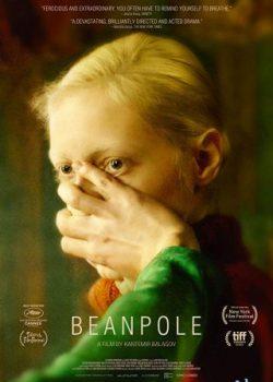 Đậu Đũa – Beanpole