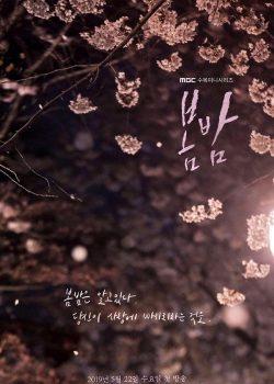 Đêm Xuân – One Spring Night