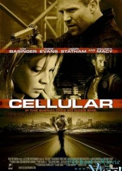 Tín Hiệu Sống – Cellular