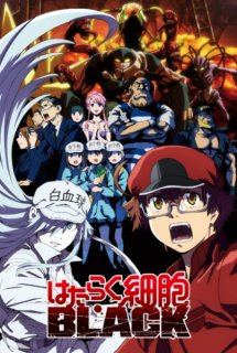 Hataraku Saibou Black - Cells at Work! CODE BLACK!