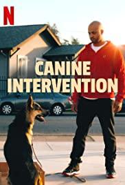Cali K9: Trường Huấn Khuyển (Phần 1) - Canine Intervention (Season 1)