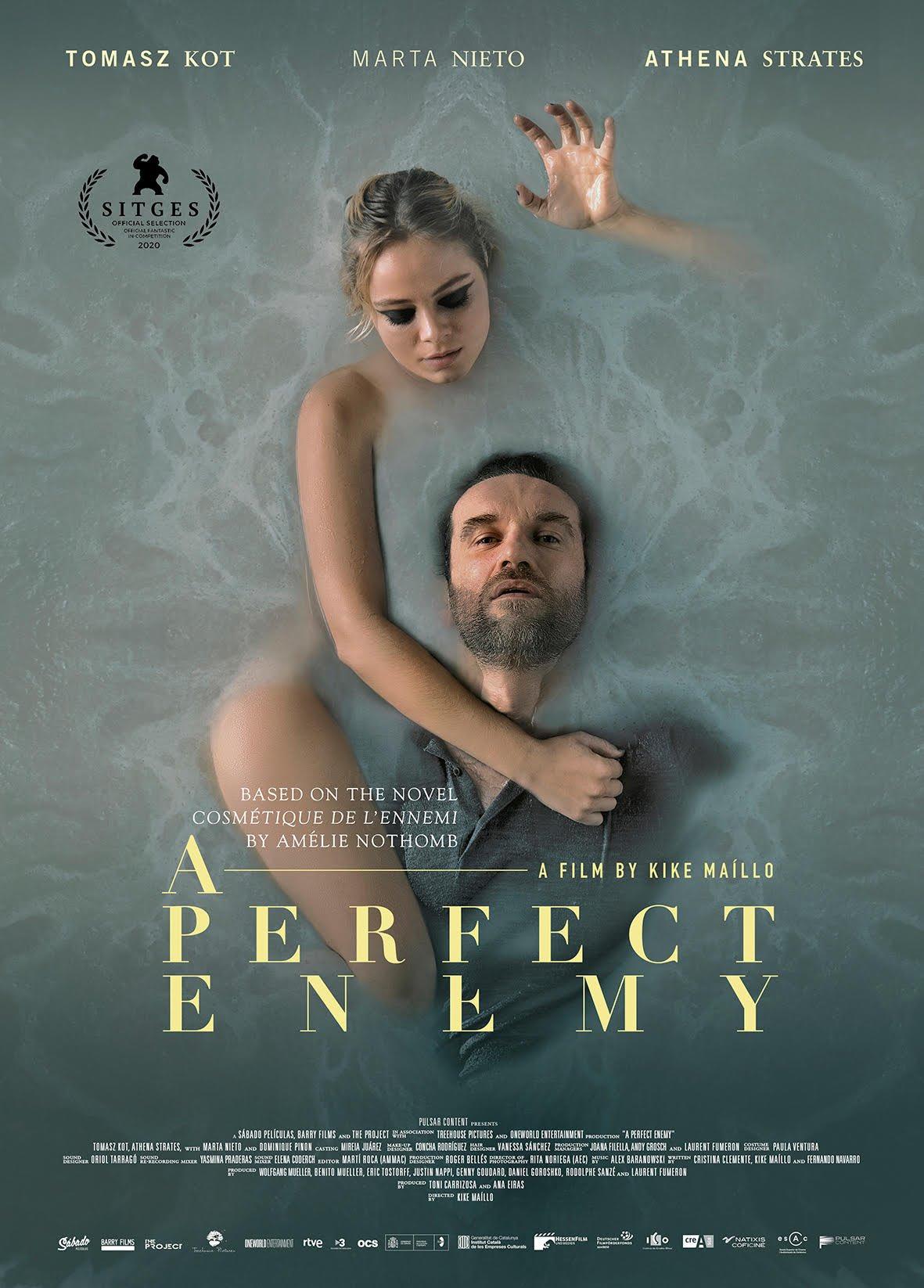Kẻ Thù Hoàn Hảo - A Perfect Enemy