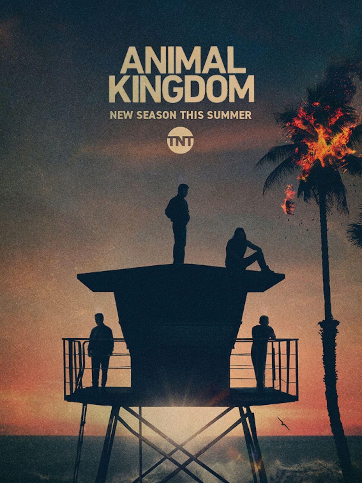 Vương Quốc Động Vật (Phần 5) - Animal Kingdom (Season 5)